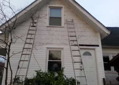 Siding before and after 10850621_868012426555526_275327907_n